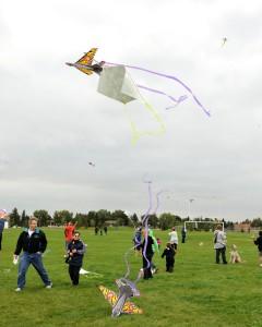 Kites Over Callingwood